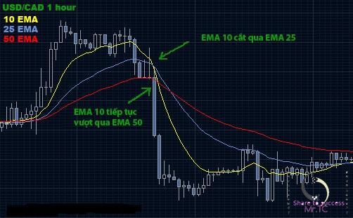 EMA 10-25-50