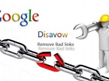 website check backlink xấu