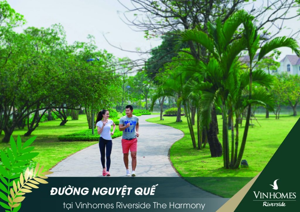vinhomes-riverside-gd2-the-harmony-nguyet-que