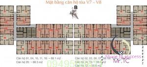 mặt bằng tòa v7-8 the vesta